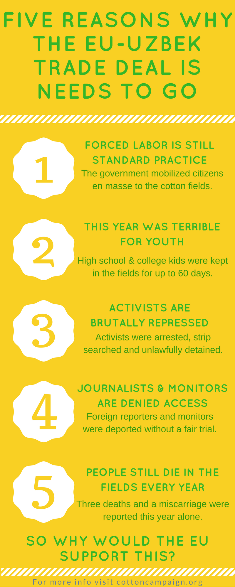 Cotton Infographic
